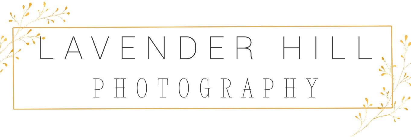 Lavender Hill Photography